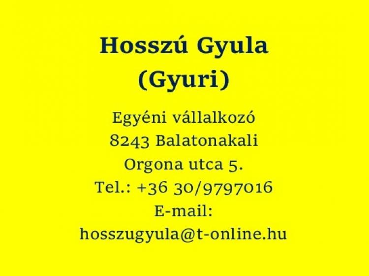 Hosszú Gyula e.v.
