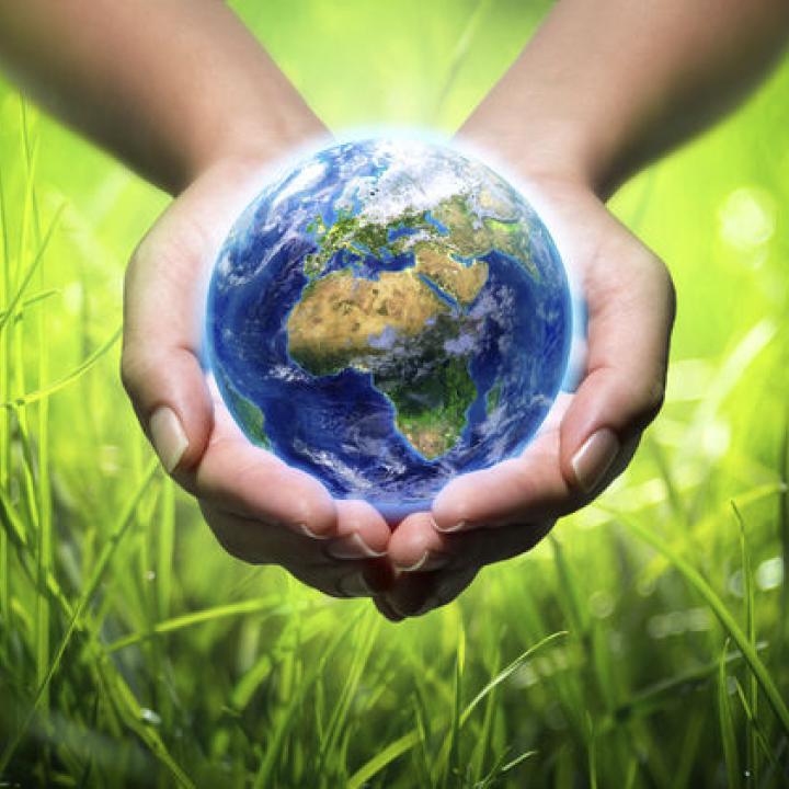 Fórum a fenntartható fejlődésről