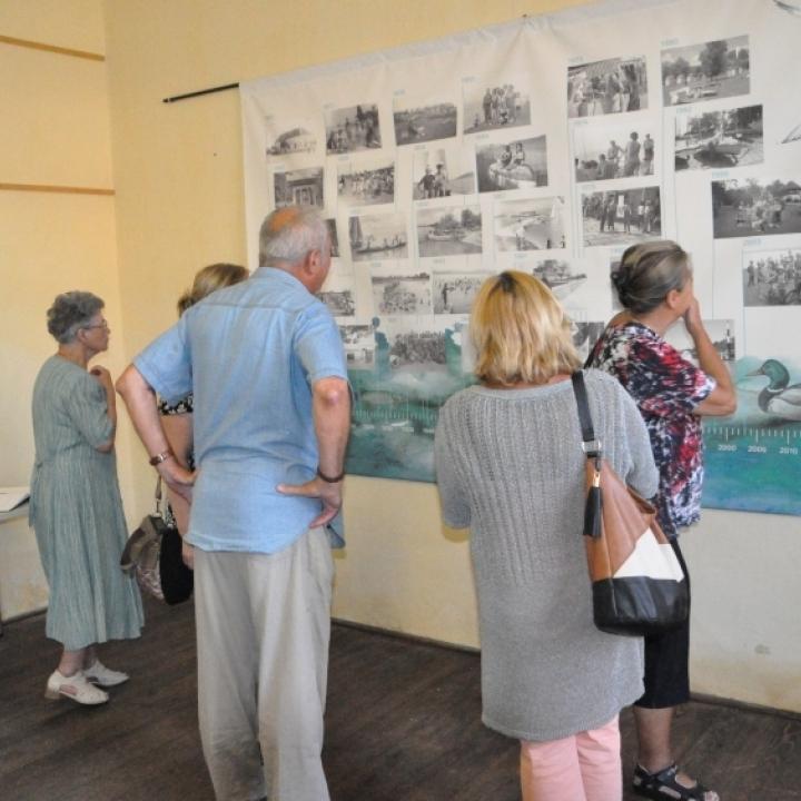 Kiállítás megnyitók