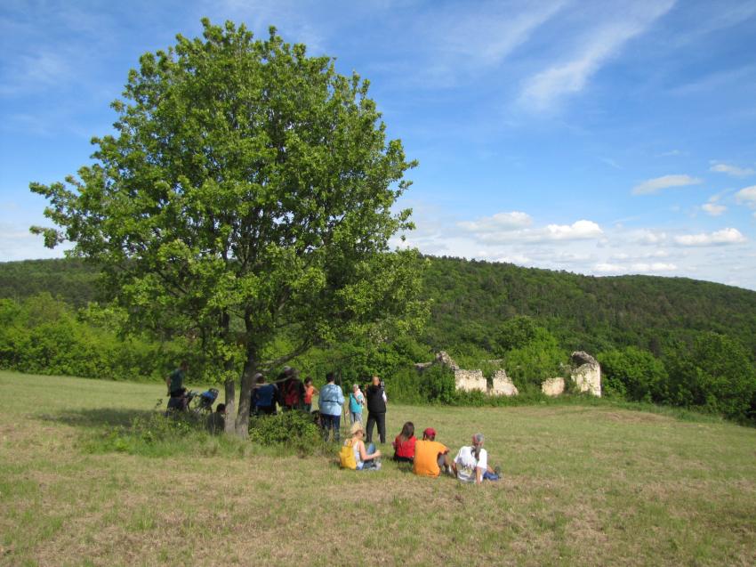 Tavaszi túra a Becce-hegyre