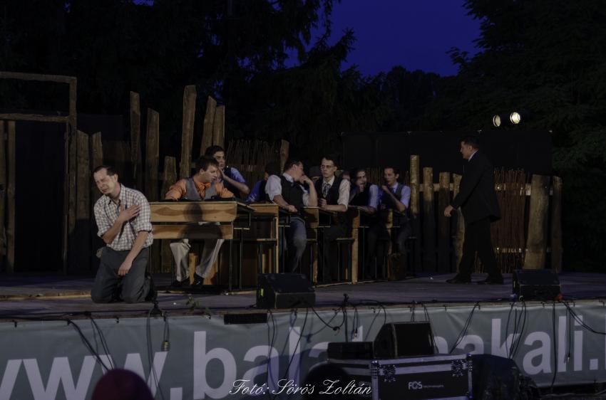 A Pál utcai fiúk zenés játék a Szabadtéri Színpadon